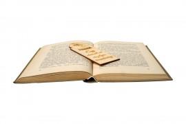 Egy olvasott nő veszélyes teremtmény fa könyvjelző